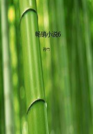 畅销小说6