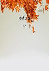 畅销小说3