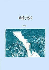 畅销小说9